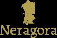 Neragora Blog