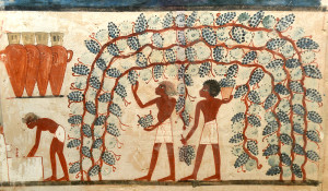 Parete ovest_Tomba di Nakht_ TT52_Necropoli tebana_di_Sheikh Abd el-Qurna